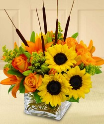 Splash of Autumn from Clifford's where roses are our specialty