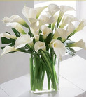Simplicity Calla Lilly Bouquet from Clifford's where roses are our specialty