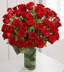 Luxury 48 Fate Roses from Clifford's where roses are our specialty