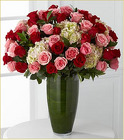 Luxury 48 Indulgent Roses from Clifford's where roses are our specialty