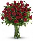 Three Dozen Roses from Clifford's where roses are our specialty
