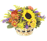 FTD Autumn Medley Basket from Clifford's where roses are our specialty