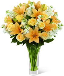 The  Admiration Luxury Bouquet from Clifford's where roses are our specialty
