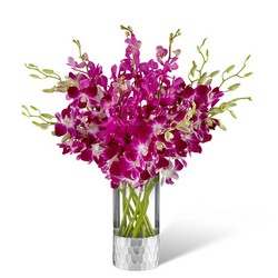 The Orchid Bouquet by Vera Wang from Clifford's where roses are our specialty