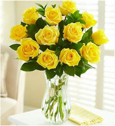 Dozen Yellow Roses from Clifford's where roses are our specialty