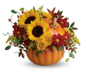 Pretty Pumpkin Bouquet from Clifford's where roses are our specialty
