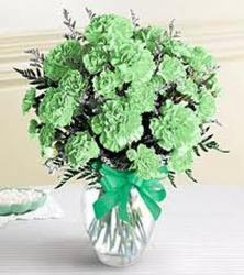 Green Carnations from Clifford's where roses are our specialty
