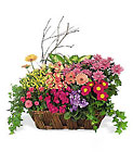 Deluxe European Garden Basket from Clifford's where roses are our specialty
