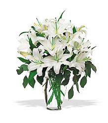 Lilies of the Field from Clifford's where roses are our specialty