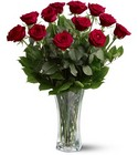 One  Dozen Roses from Clifford's where roses are our specialty
