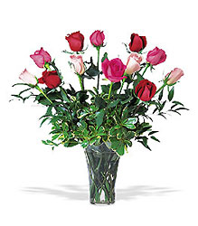 A Dozen Multi-colored Roses from Clifford's where roses are our specialty