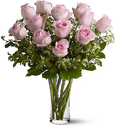 Pink Roses from Clifford's where roses are our specialty