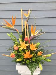 Tropical Treasure from Clifford's where roses are our specialty