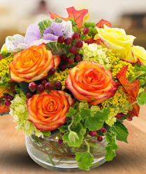 Essence of Autumn from Clifford's where roses are our specialty