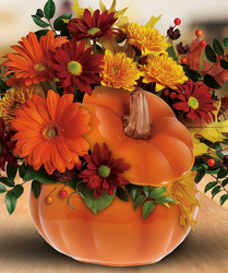 Country Pumpkin from Clifford's where roses are our specialty